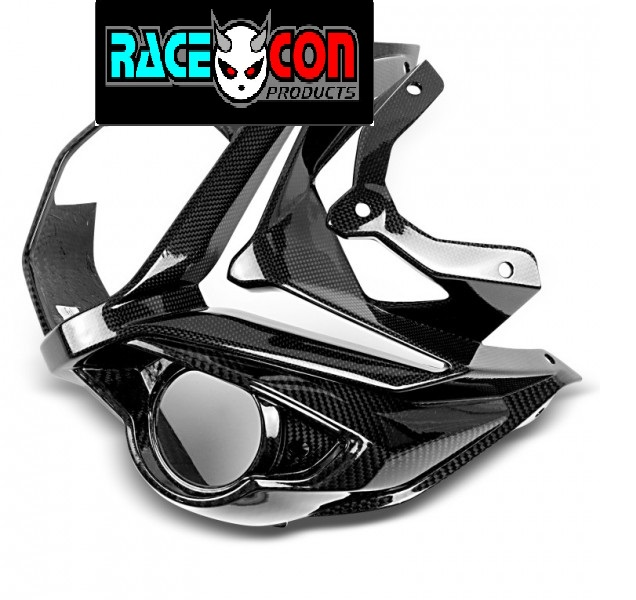 S1000R front nose fairing